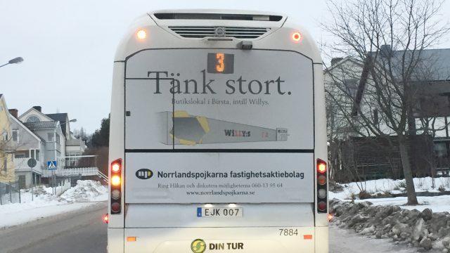 Bussbaksida